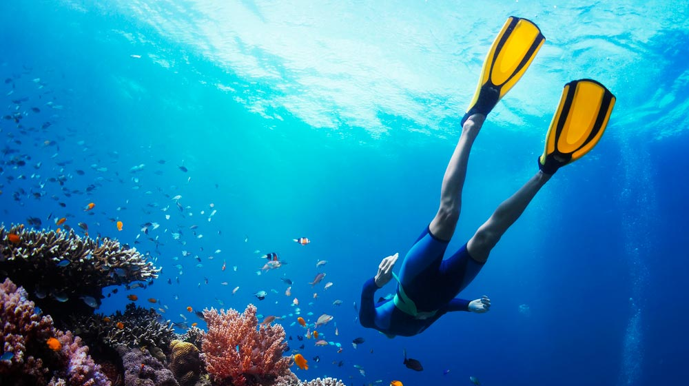 woman-diving-near-coral-reef-Aerobic-and-Anaerobic-Low-Impact-Exercises