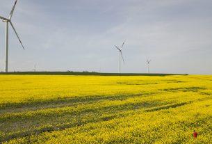La UE advierte a los exportadores turcos de posibles costos adicionales elevados bajo las nuevas reglas de carbono